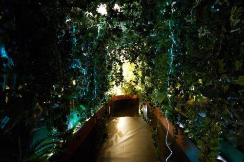 Perrier_Jouet_Bio_responsive_garden_Bompass_Parr.jpg